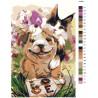 Раскладка С любовью Раскраска по номерам на холсте Живопись по номерам Z-AB41