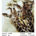 Сложность и количество цветов Два жирафа Раскраска по номерам на холсте Живопись по номерам Z-AB44