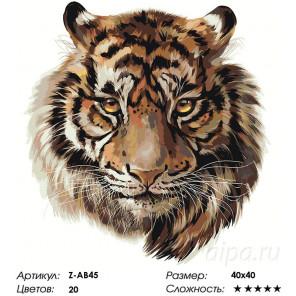 Сложность и количество цветов Тигр Раскраска по номерам на холсте Живопись по номерам Z-AB45