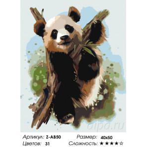 Сложность и количество цветов Малыш панда Раскраска по номерам на холсте Живопись по номерам Z-AB50