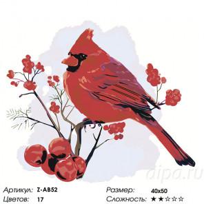 Сложность и количество цветов Кардинал на ветке рябины Раскраска по номерам на холсте Живопись по номерам Z-AB52