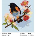 Сложность и количество цветов Яблоневый цвет Раскраска по номерам на холсте Живопись по номерам Z-AB7