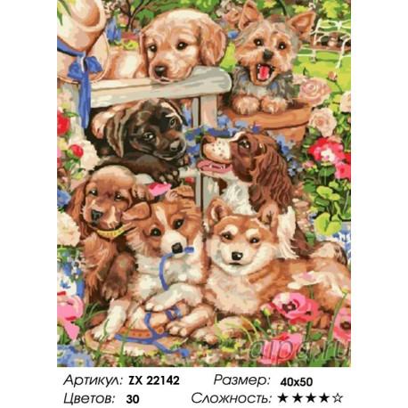 Количество цветов и сложность Собачье счастье Раскраска картина по номерам на холсте ZX 22142