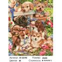 Собачье счастье Раскраска картина по номерам на холсте
