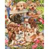 Собачье счастье Раскраска картина по номерам на холсте ZX 22142