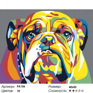 Количество красок и сложность Радужный бульдог Раскраска по номерам на холсте Живопись по номерам PA156