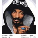 Количество красок и сложность Snoop Dogg Раскраска по номерам на холсте Живопись по номерам Z-AB82