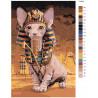 Раскладка Кот фараона Раскраска картина по номерам на холсте Z-AB75