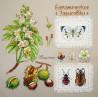Каштан. Ботаника Набор для вышивания Марья Искусница