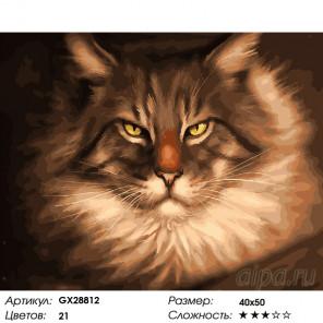 Количество цветов и сложность Царственный кот Раскраска картина по номерам на холсте GX28812