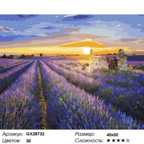 Количество цветов и сложность Закат над лавандой Раскраска картина по номерам на холсте GX28732