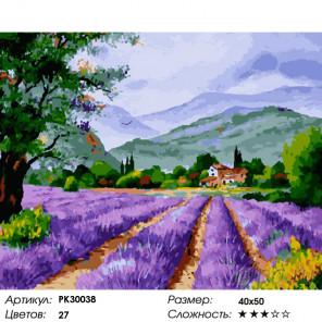 Количество цветов и сложность Под небом Прованса Раскраска картина по номерам на холсте PK30038