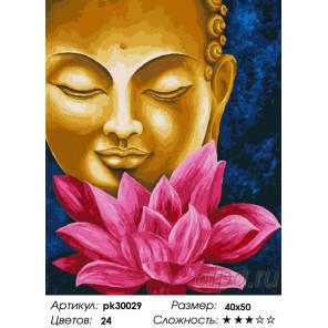 Количество цветов и сложность Лотосы для Будды Раскраска картина по номерам на холсте PK30029