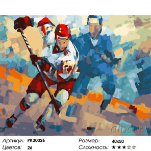 Количество цветов и сложность Хоккей Раскраска картина по номерам на холсте PK30026