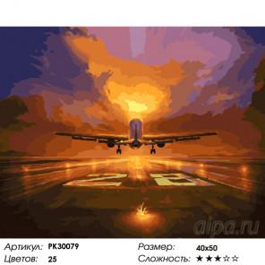 Количество цветов и сложность На взлёт! Раскраска картина по номерам на холсте PK30079