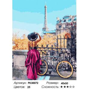Количество цветов и сложность Парижский велосипед Раскраска картина по номерам на холсте PK30072