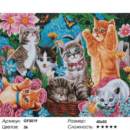 Количество цветов и сложность Игривые котята Алмазная мозаика вышивка на подрамнике Painting Diamond GF3019
