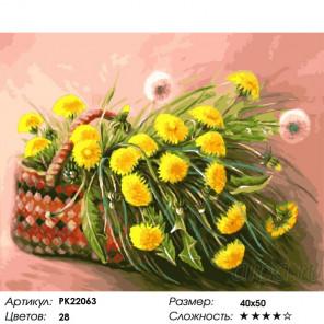 Сложность и количество цветов Одуванчики в корзинке Раскраска картина по номерам на холсте PK22063