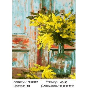 Сложность и количество цветов Желтые мимозы Раскраска картина по номерам на холсте PK22062