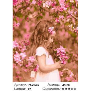 Сложность и количество цветов В цветущем саду Раскраска картина по номерам на холсте PK24060