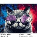 Сложность и количество цветов Космический кот Раскраска картина по номерам на холсте PK24053
