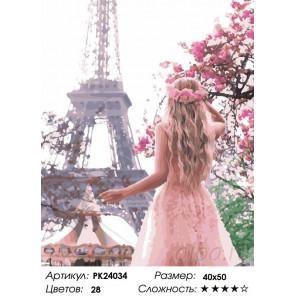 Сложность и количество цветов Жизнь в Париже Раскраска картина по номерам на холсте PK24034