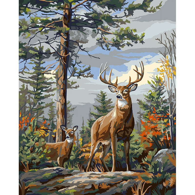 PLD-22083 Гордые олени Standing Proud Раскраска картина по ...