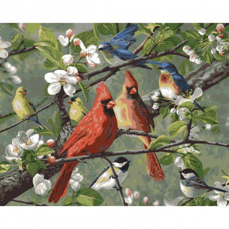 Певчие птицы Songbirds Раскраска картина по номерам Plaid