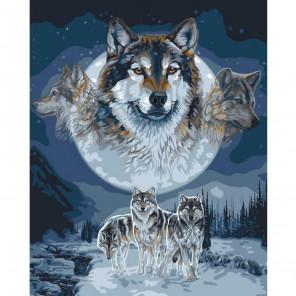 Волк, ловец снов Wolf Dreamcatcher Раскраска картина по номерам Plaid