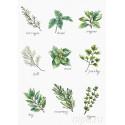 Специи и травы Набор для вышивания Luca-S B2345