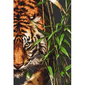 Тигр Набор для вышивания Luca-S B2356
