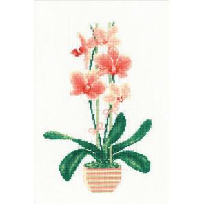 Жёлтая орхидея Набор для вышивания Риолис 1161