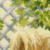 3_2 Малый шпиц Набор для вышивания Риолис