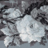 4_2 Серебряный сон Набор для вышивания Риолис