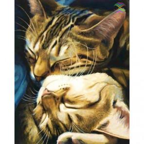 Кошачья нежность, Селия Пайк Алмазная вышивка мозаика Алмазное Хобби
