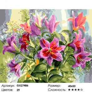 Розовые лилии Раскраска картина по номерам на холсте GX27486