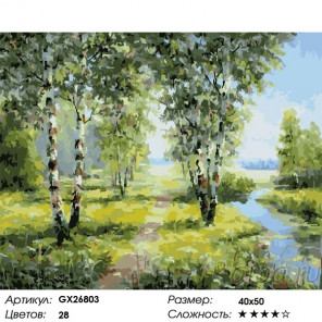 Березы у реки Раскраска картина по номерам на холсте GX26803