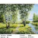 Сложность и количество цветов Березы у реки Раскраска картина по номерам на холсте GX26803