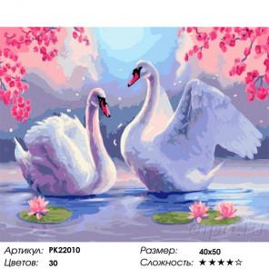 Сложность и количество цветов Лебединая верность Раскраска картина по номерам на холсте PK22010