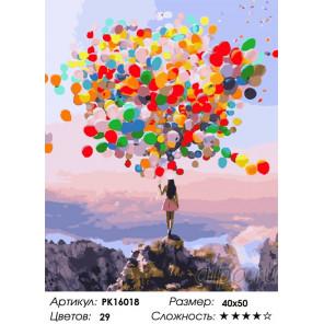 Сложность и количество цветов Разноцветные шары Раскраска картина по номерам на холсте PK16018