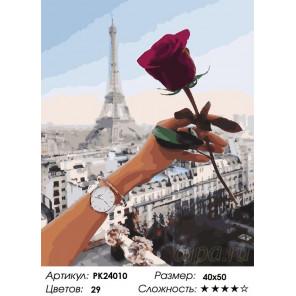 Сложность и количество цветов Роза Парижа Раскраска картина по номерам на холсте PK24010