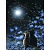 Созвездия Раскраска картина по номерам на холсте Белоснежка 295-AS