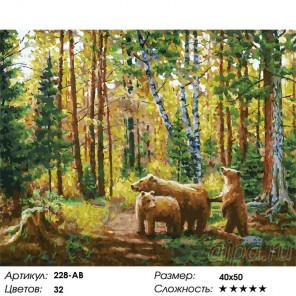 Хранители леса Раскраска картина по номерам на холсте Белоснежка 228-AB