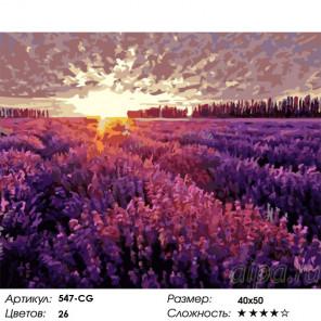 Сложность и количество цветов Вечер в Провансе Раскраска картина по номерам на холсте Белоснежка 547-CG