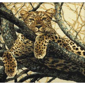 В рамке Леопард Набор для вышивания Риолис 937