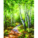 Березовый лес Раскраска картина по номерам Schipper (Германия)