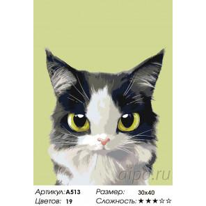 Количество цветов и сложность Счастливчик Раскраска по номерам на холсте Живопись по номерам A513