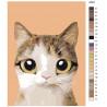 раскладка Мурзик Раскраска по номерам на холсте Живопись по номерам