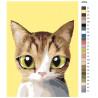 раскладка Прыгунок Раскраска по номерам на холсте Живопись по номерам