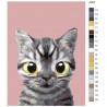 раскладка Полосатик Раскраска по номерам на холсте Живопись по номерам